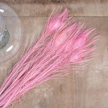 Load image into Gallery viewer, Peacock Feathers Pink 45cm