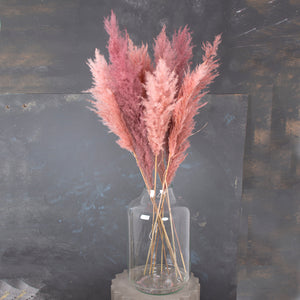Bouquet - Mixed Pampas Pink