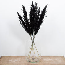 Load image into Gallery viewer, Pampas Grass Type 4 Black