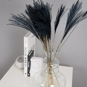 Fluffy Mini Pampas Grass - Black