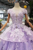 Princess Lilac Beaded Quinceanera Gown 3D Floral Appliques Ball Gown MP341