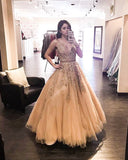 V-neck Plus Size Prom Dress Beaded Appliques Floor Length Quinceanera Dress MP911