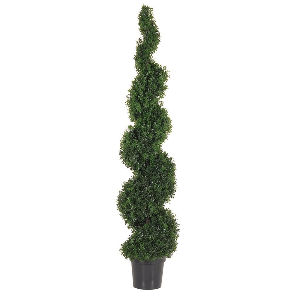 Green Outdoor Tea Leaf Spiral Tree in Black Plastic Pot