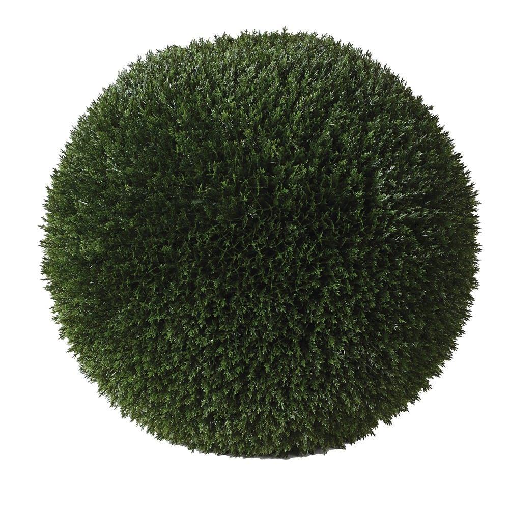 Outdoor Podacarpus Topiary Sphere