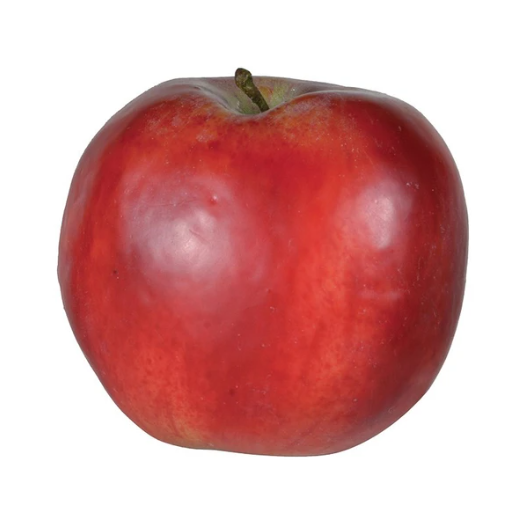 Faux Red Windsor Apple