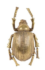 Decorative beetle