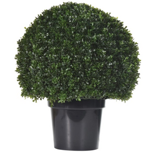 Green Outdoor Box Ball Topiary in Black Plastic Pot