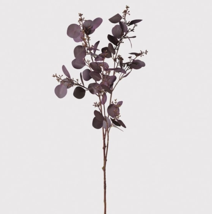 Large Deep Aubergine Eucalyptus Spray with Seeds