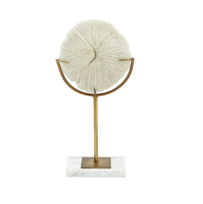 Coral disk & Stand
