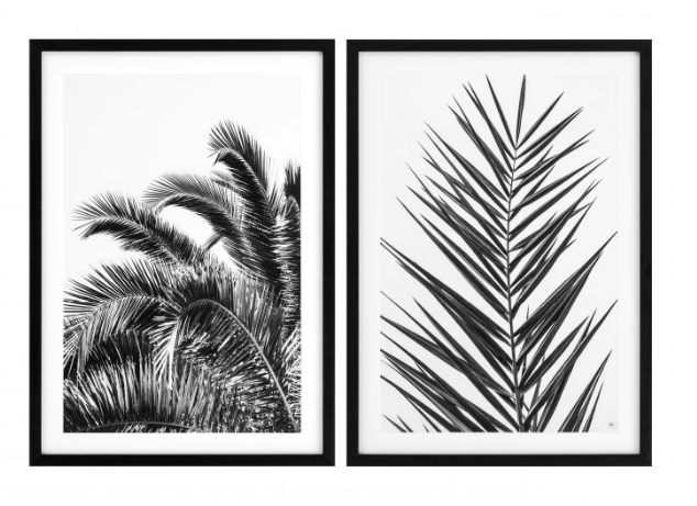 Palm Leaves Set of 2