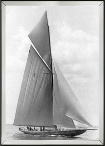 Americas Cup 1910