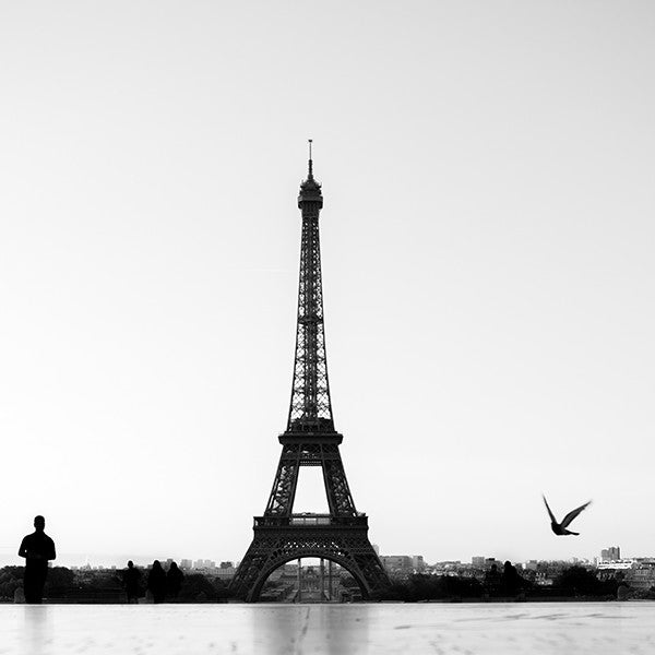 Eiffel for You
