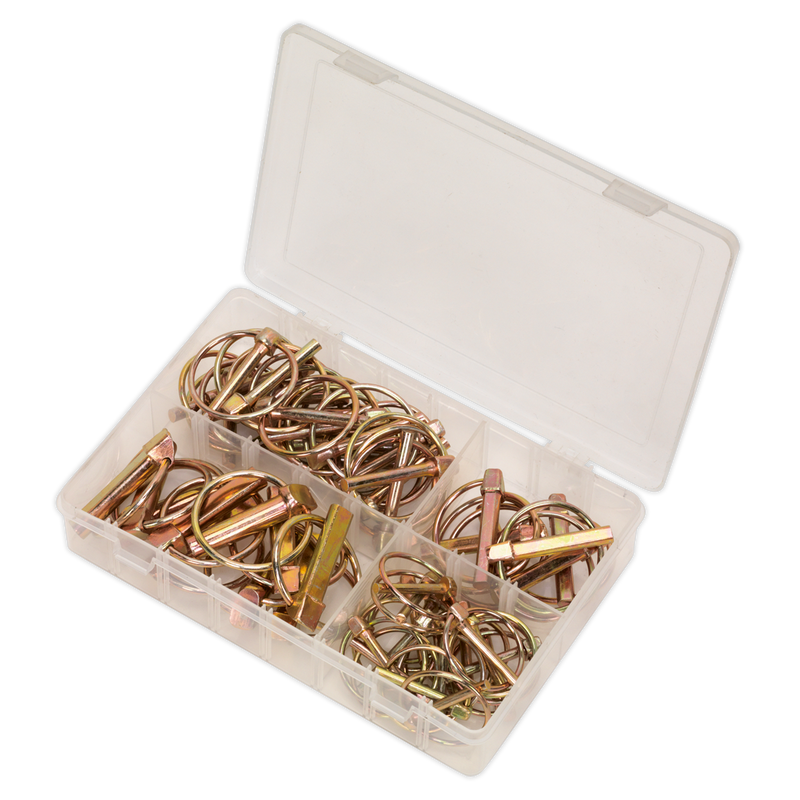 Linch Pin Assortment 50pc Metric