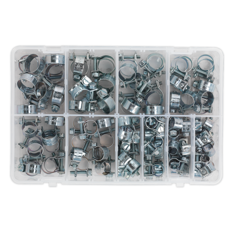 Mini Hose Clip Assortment 100pc
