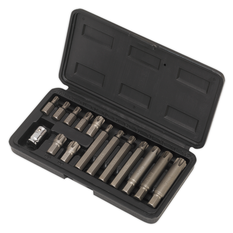 "Ribe Bit & Holder Set 15pc - 3/8""Sq Drive"