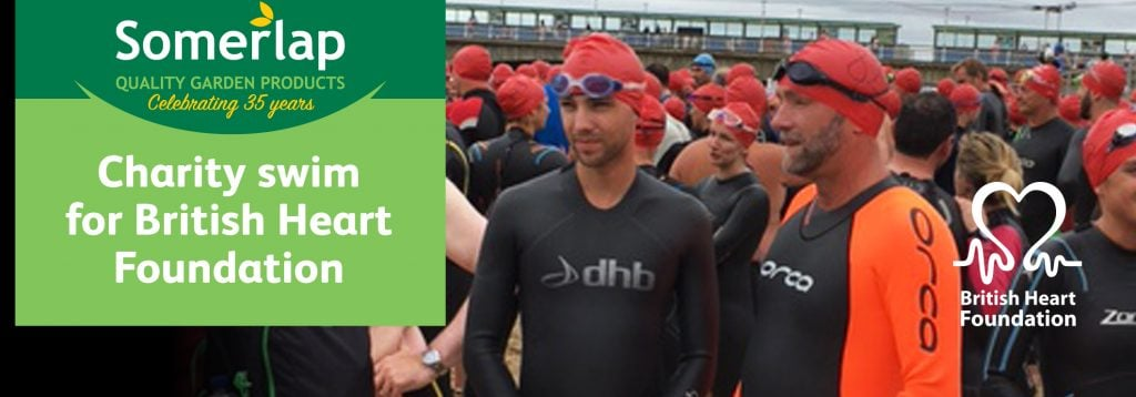 Somerlap in British Heart Foundation swim