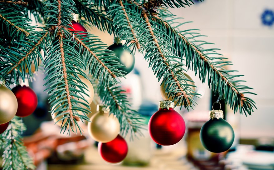 Look after your Somerlap Christmas tree