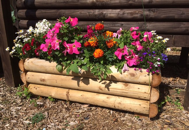 Somerlap Half Log Planter