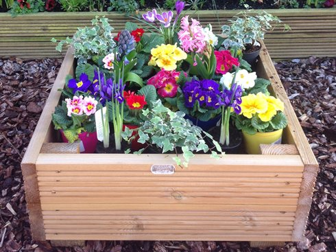 Somerlap Mothers Day garden planter