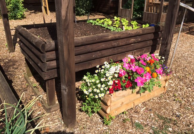 Somerlap Raised Planter