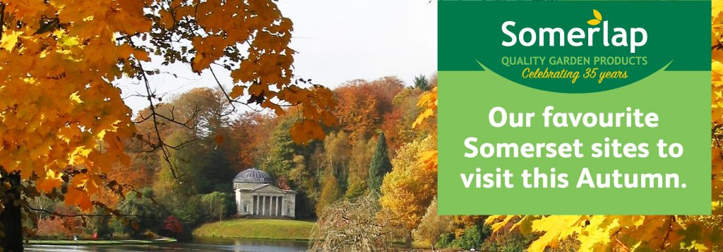Place to visit in Somerset