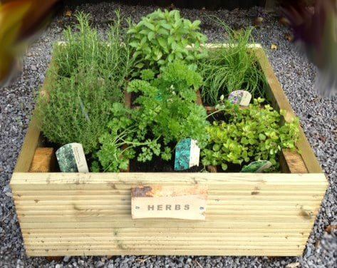 herb planter – gift ideas for mothers day