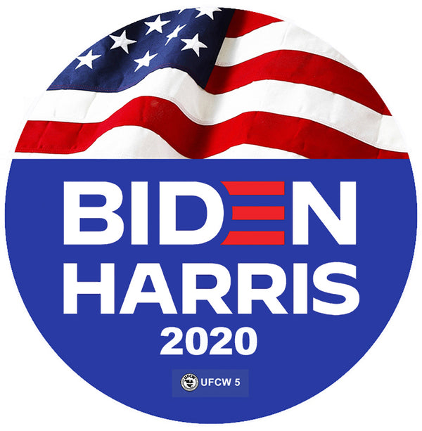 Biden Harris for America Pin