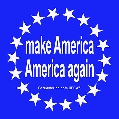 Make America America Again Magnet