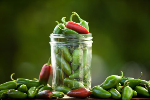 Seeds Master Singapore - VFR57 Hot Pepper 'Jalapeno M' (12-16 Seeds) Fruits Seeds