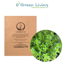 Seeds Master Singapore - PR49 Thyme (140-150 Seeds) Herbs