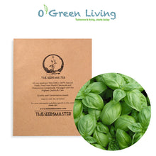 "Seeds Master Singapore - S3 Basil ""Italiano Classico"" (600-650 Seeds) Herbs"