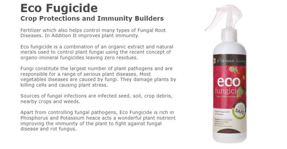 Fungicide for Plants - OGL Eco Fungicide 500ml