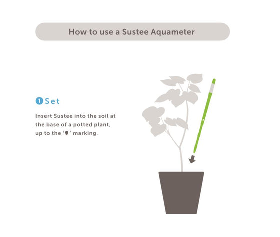 Sustee Aqua Meter (M) - How to Use