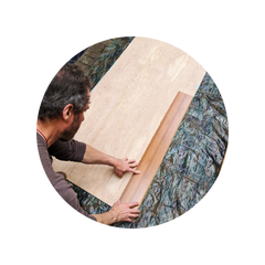 The Root Board Plank Position