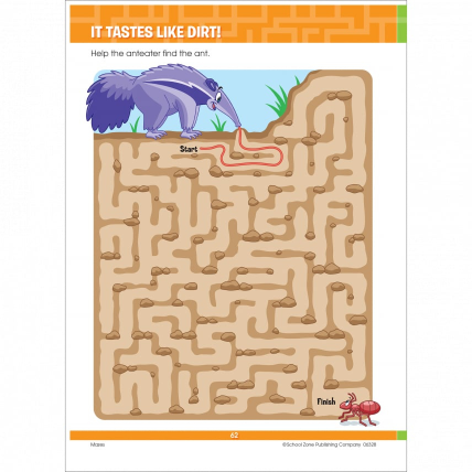 Big Mazes And More Book