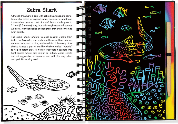 Scratch and Sketch Sharks