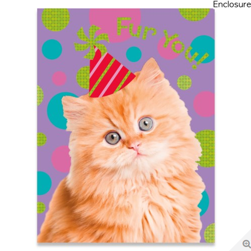 Cat Photo Foil Gift Enclosure Card