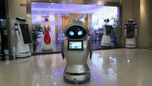 Load image into Gallery viewer, WHOLESALE 100 PCS - Intelligent Disinfection Robot - Hospital,School Shopping ETC.