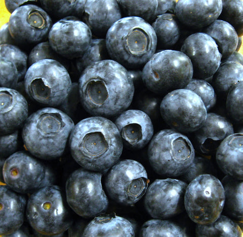 Blueberry Fruit - certified organic