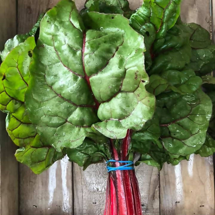 Organic Swiss Chard Red