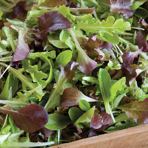 Organic Lettuce Mix (8oz bag)