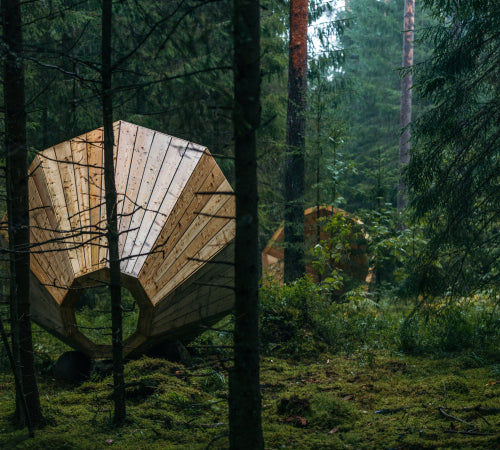 A big megaphone in the forest