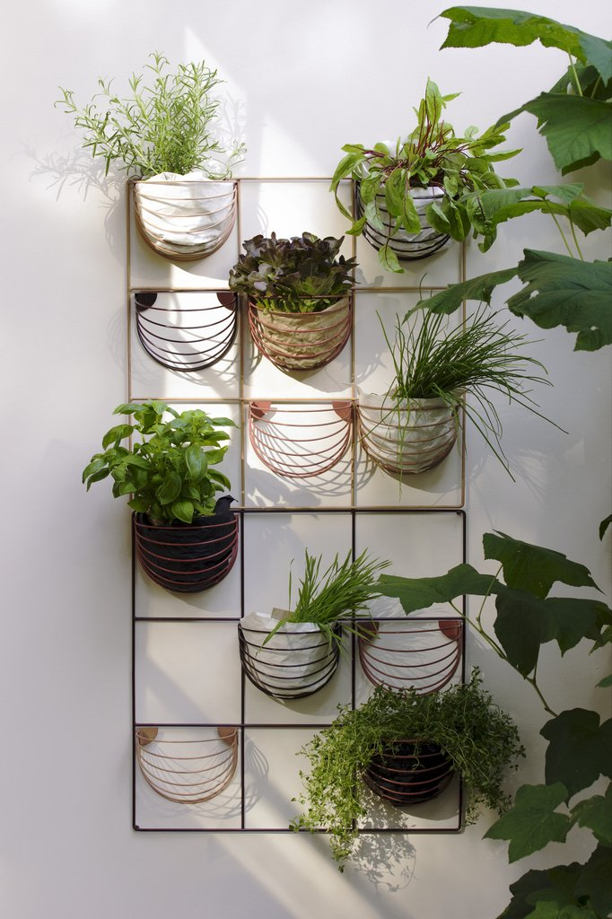 Wall grid with baskets and plants