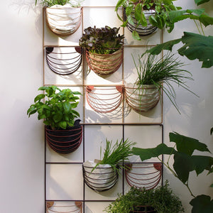 Wallment Basket - White by Wallment