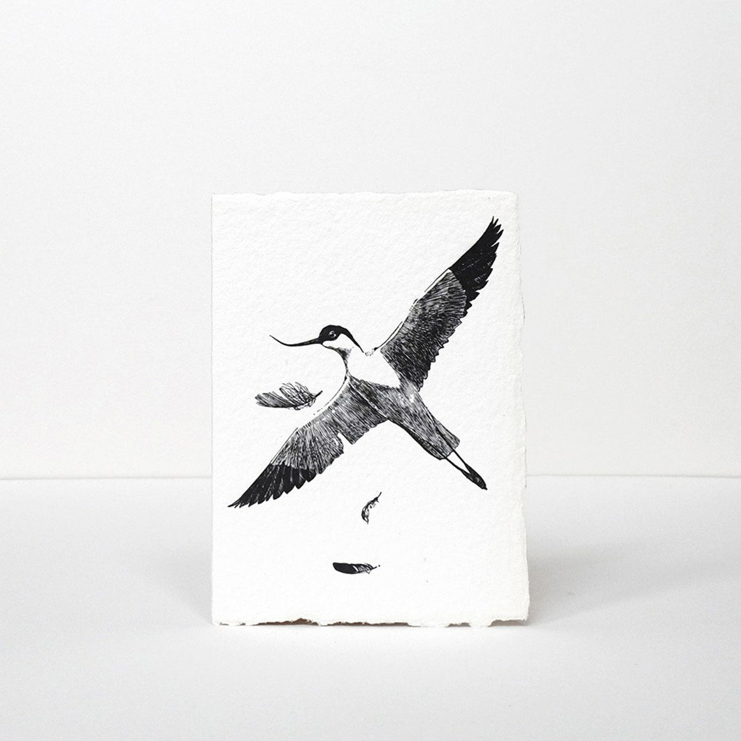 Pied Avocet Greeting Card by Labora