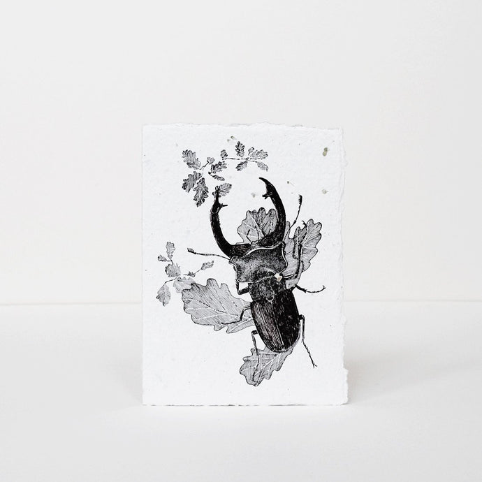Stag Beetle Greeting Card by Labora