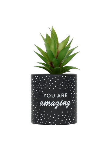 You Are Amazing Faux Pot Plant