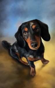 Digital Oil Painting - Premium Canvas - Pawtrait.dxb