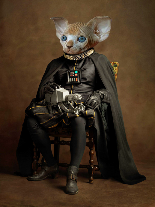 Darth Vader - Digital copy - Pawtrait.dxb
