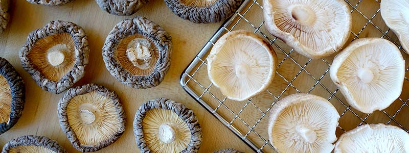 Dehydrated and fresh mushrooms